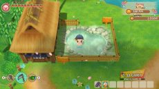 STORY-OF-SEASONS-Friends-of-Mineral-Town-dlgames-ir